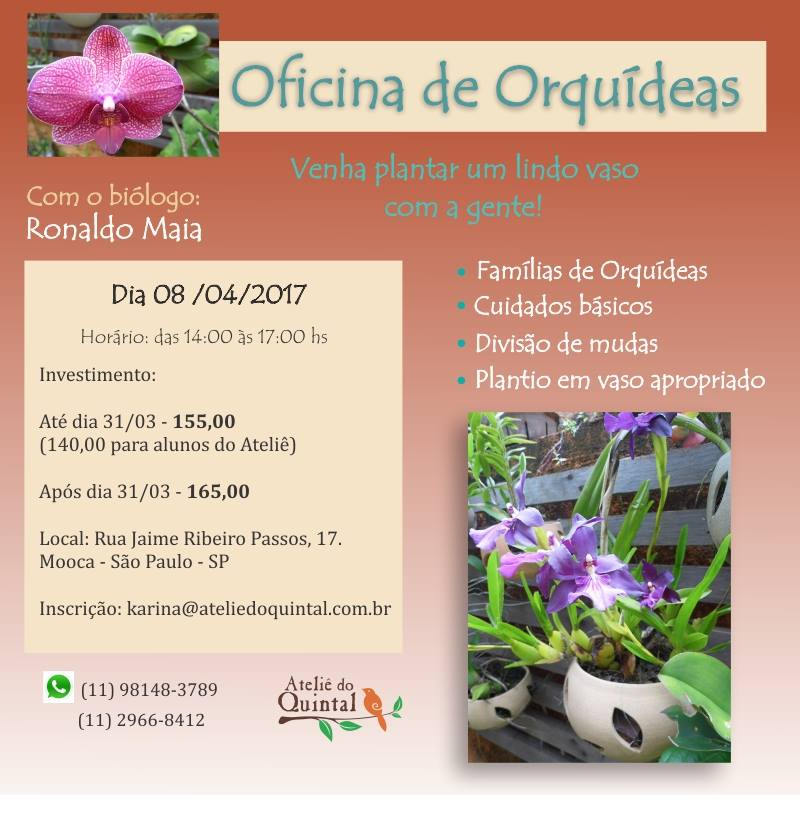 Workshop_Orquideas